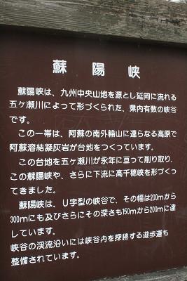 2010110950.jpg