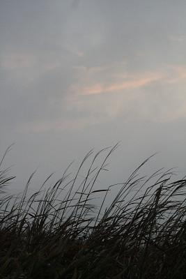 201011243.jpg