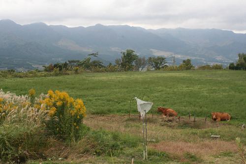 201111013.jpg